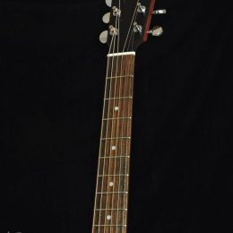 EASTMAN PCH1-GACE SOLID TOP ACOUSTIC ELECTRIC GRAND AUDITORIUM GUITAR WITH GIG BAG