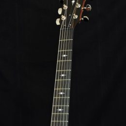 TAYLOR 317E ACOUSTIC ELECTRIC GRAND PACIFIC GUITAR WITH CASE