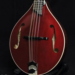 COLLINGS MT MERLOT GLOSS TOP A STYLE MANDOLIN WITH CASE