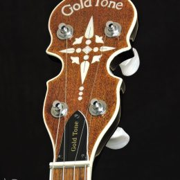 Gold Tone BG-150F Front Headstock Close