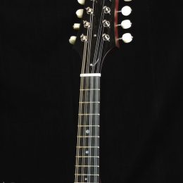 Collings MT-O Gloss Top Custom Front Headstock