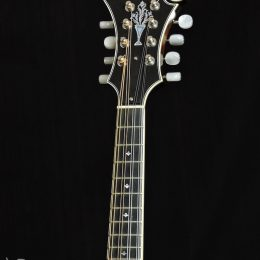 Used Yellowstone F14-F Front Headstock