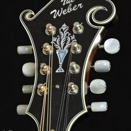 Used Yellowstone F14-F Front Headstock Close