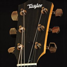Taylor 214ce DLX Front HEadstock Close
