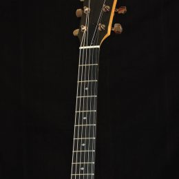 Taylor 214ce DLX Front Headstock