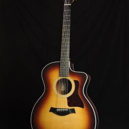 Taylor Demo-214ce-K SB Front