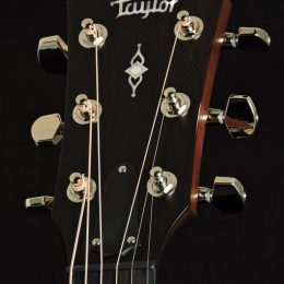 Taylor Demo-314 Front Headstock Close