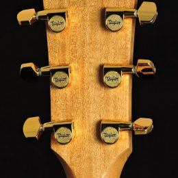 Taylor Used-214ce-K DLX Back Headstock Close
