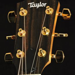Taylor Used-214ce-K DLX Front Headstock Close