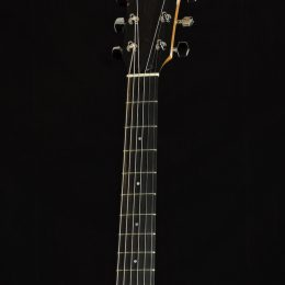 Taylor 214ce-K Front Headstock