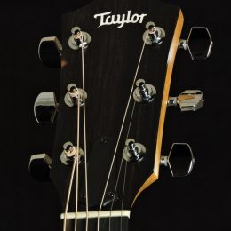 Taylor 214ce-K Front Headstock Close