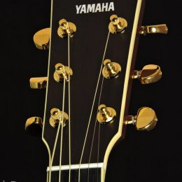 Yamaha LL-TA BS Front Headstock Close